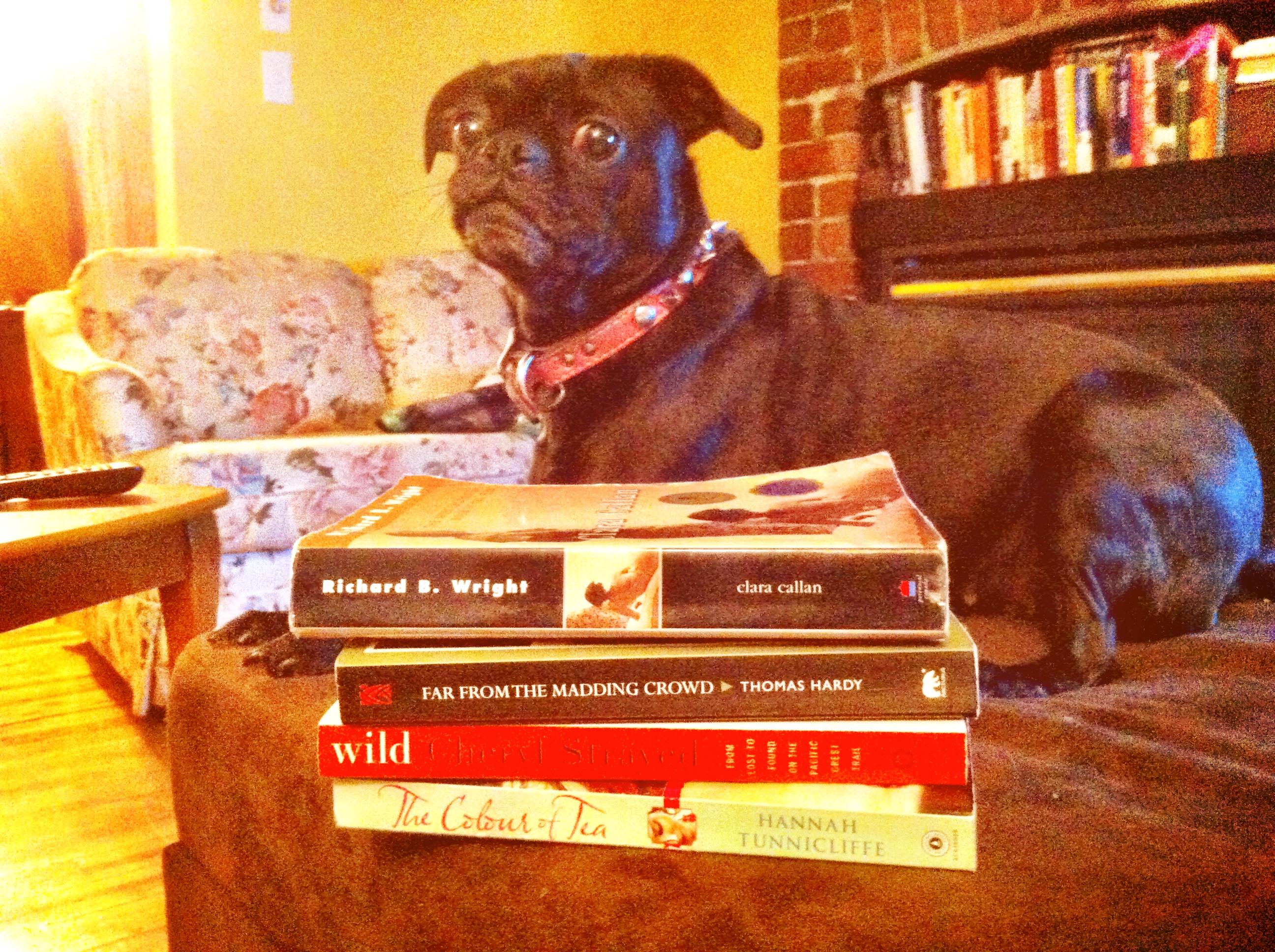 Zoe poses with my books