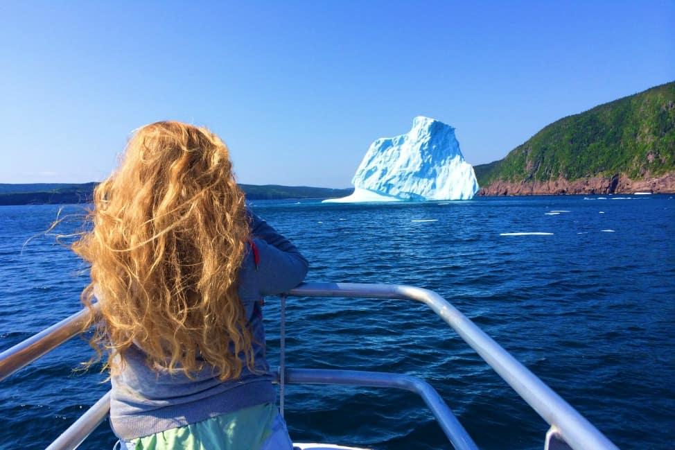 Icebergs in st John's