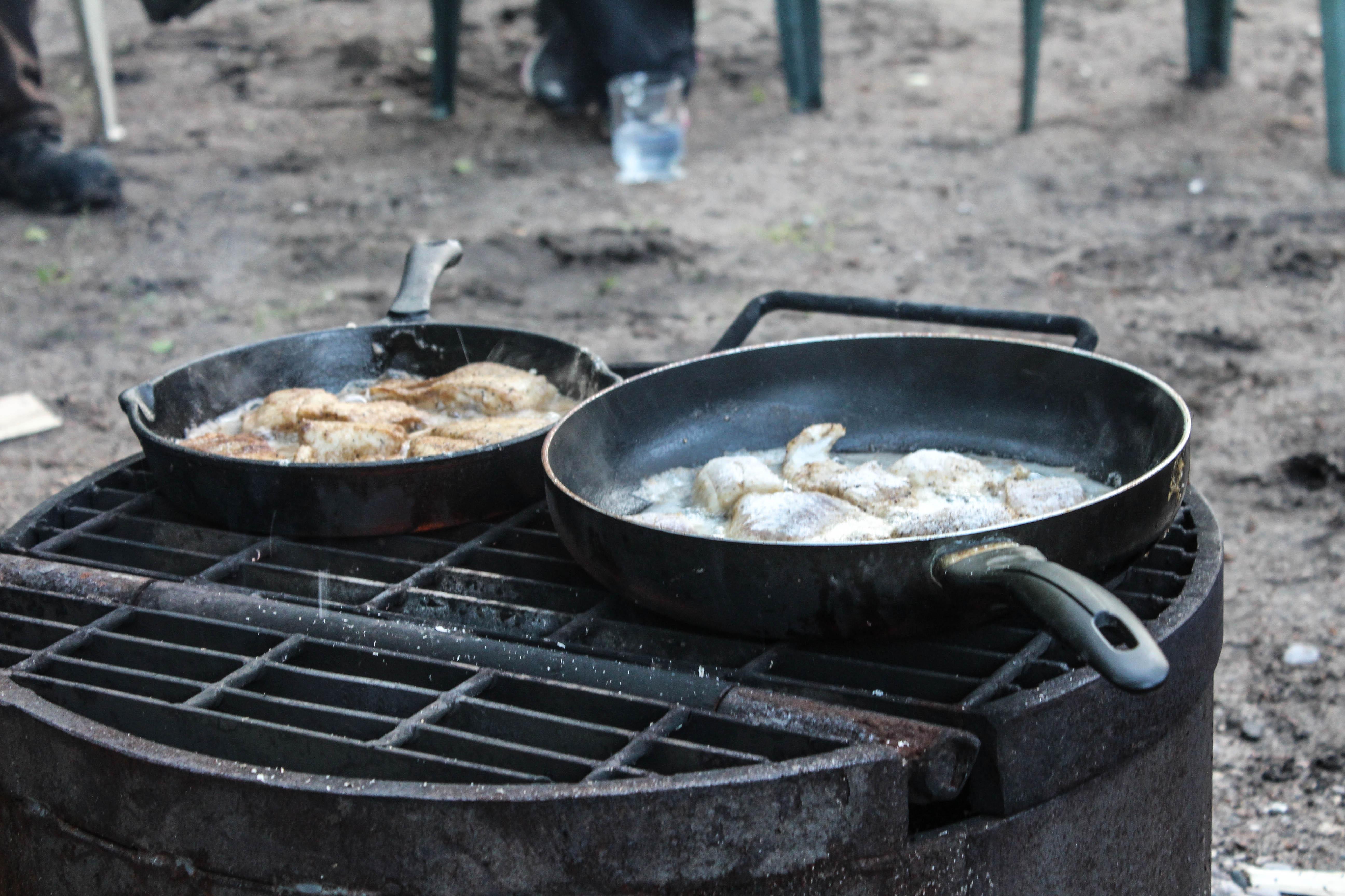 fish fry at Nesslin Lake