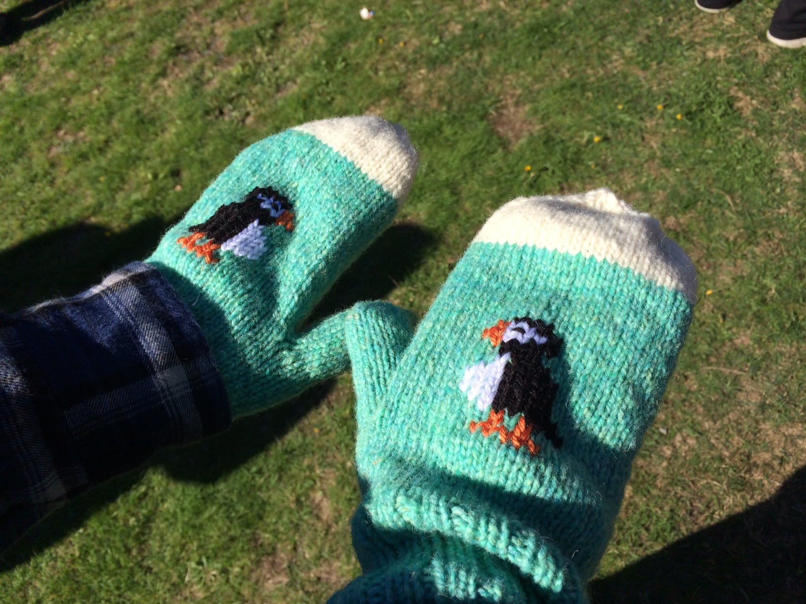 Puffin mitts!
