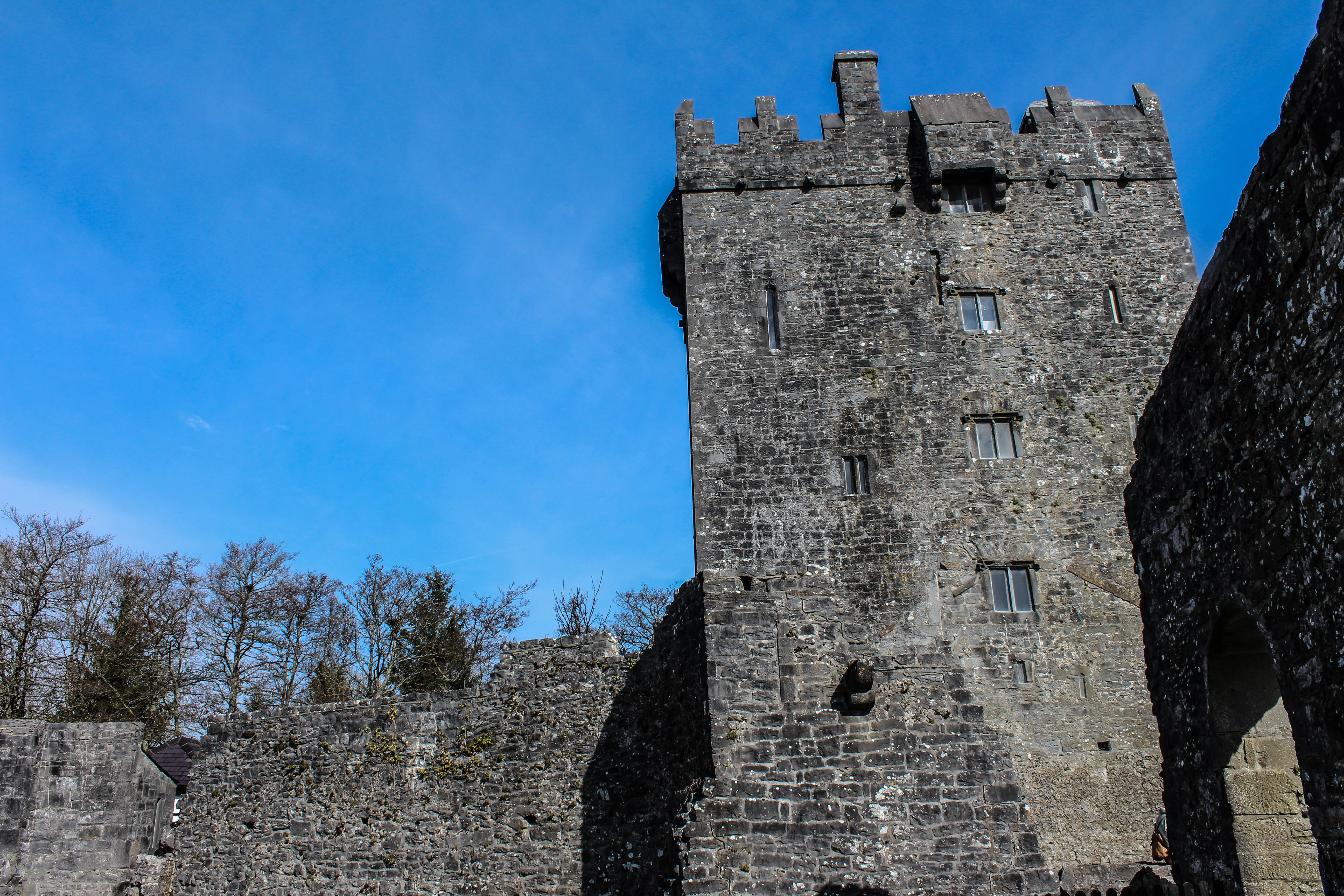 Castle in Galway