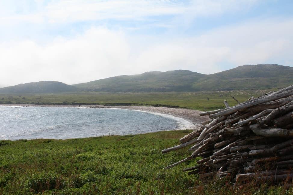 Coast of Bays, Newfoundland