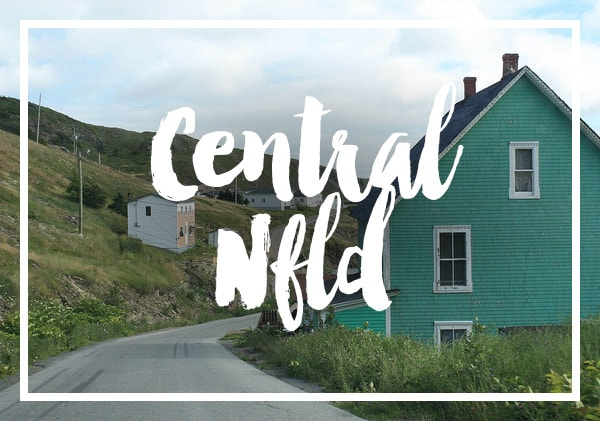 Posts on Central Newfoundland