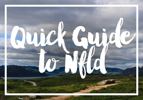 Newfoundland quick guide