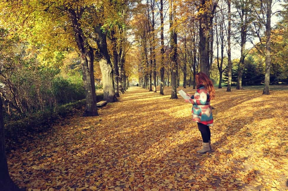 Autumn in Sanssouci Park
