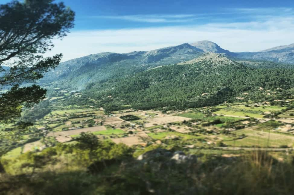 The view from the Pollenca's monastery