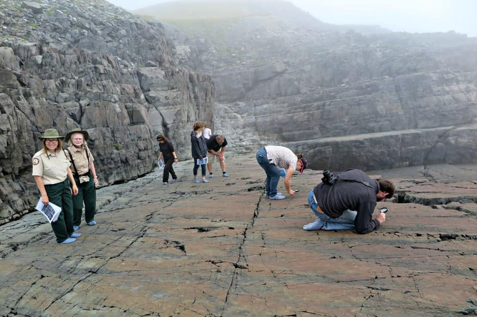 Fossils at Mistaken Point Newfoundland (part of the Irish Loop)