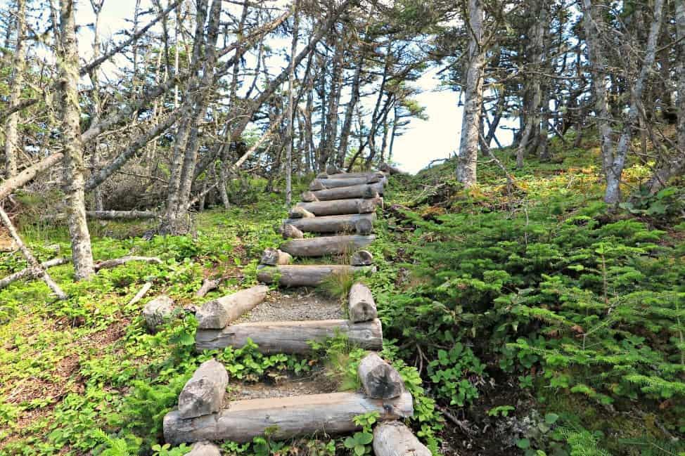 Skerwink Trail stairs