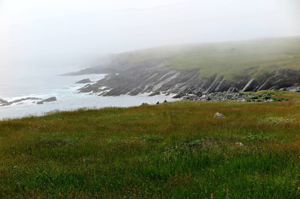 The trail to Mistaken Point