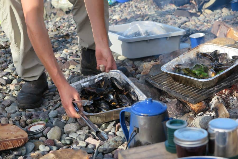 Cooking mussels on a fire