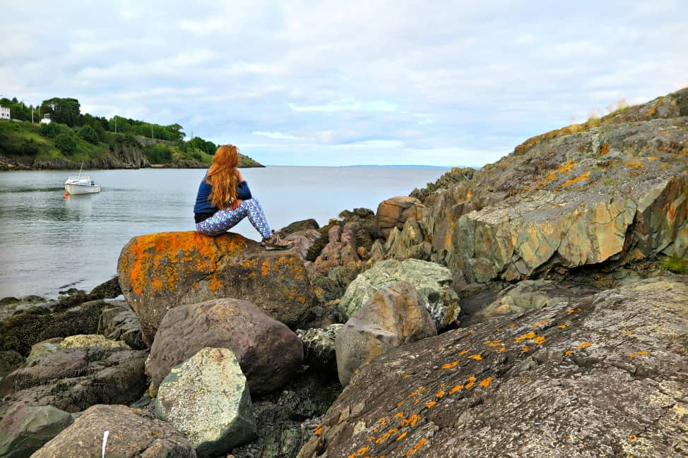 Reconnecting with Newfoundland