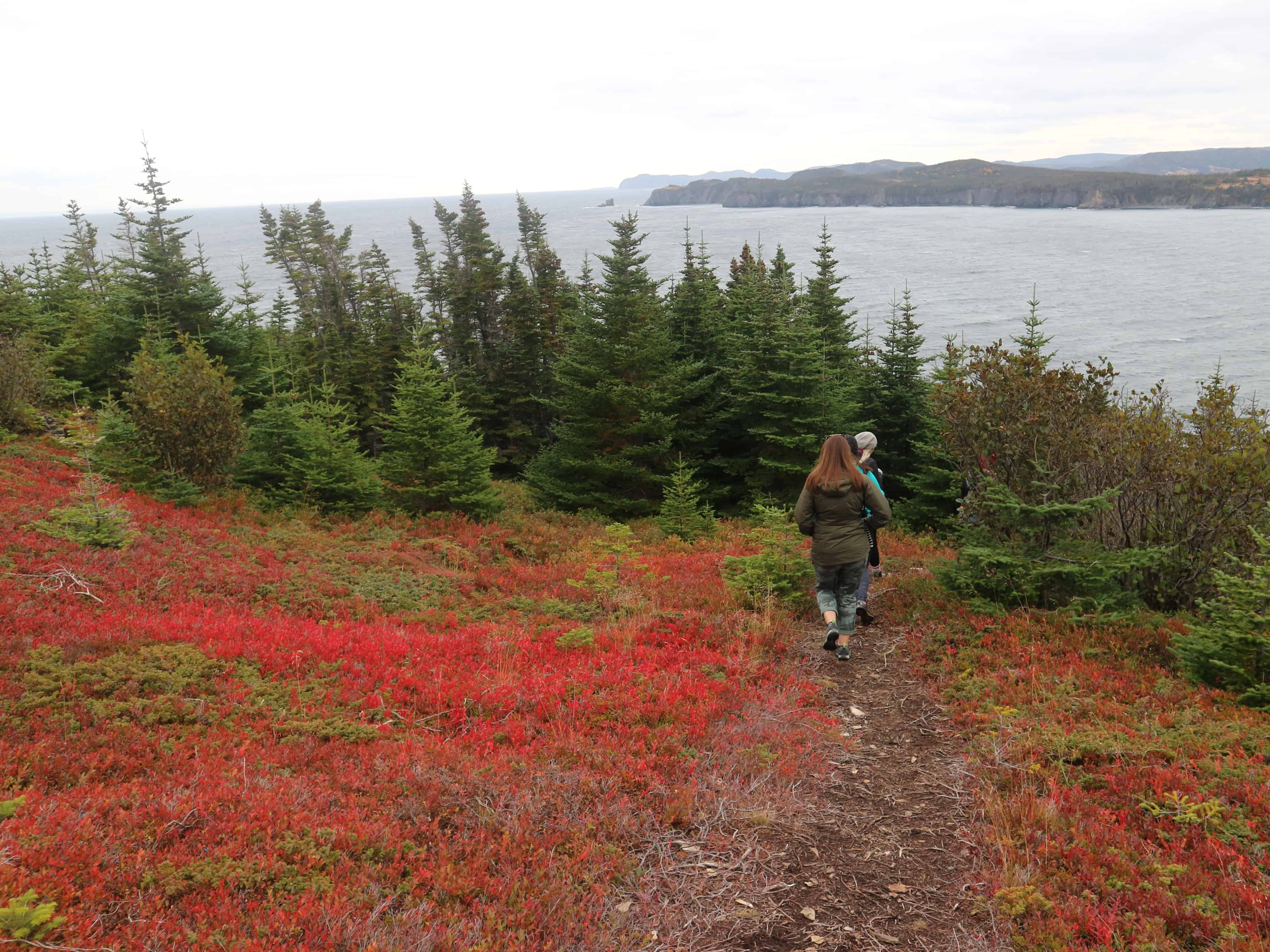 Hiking Fox Island in CHampney's West