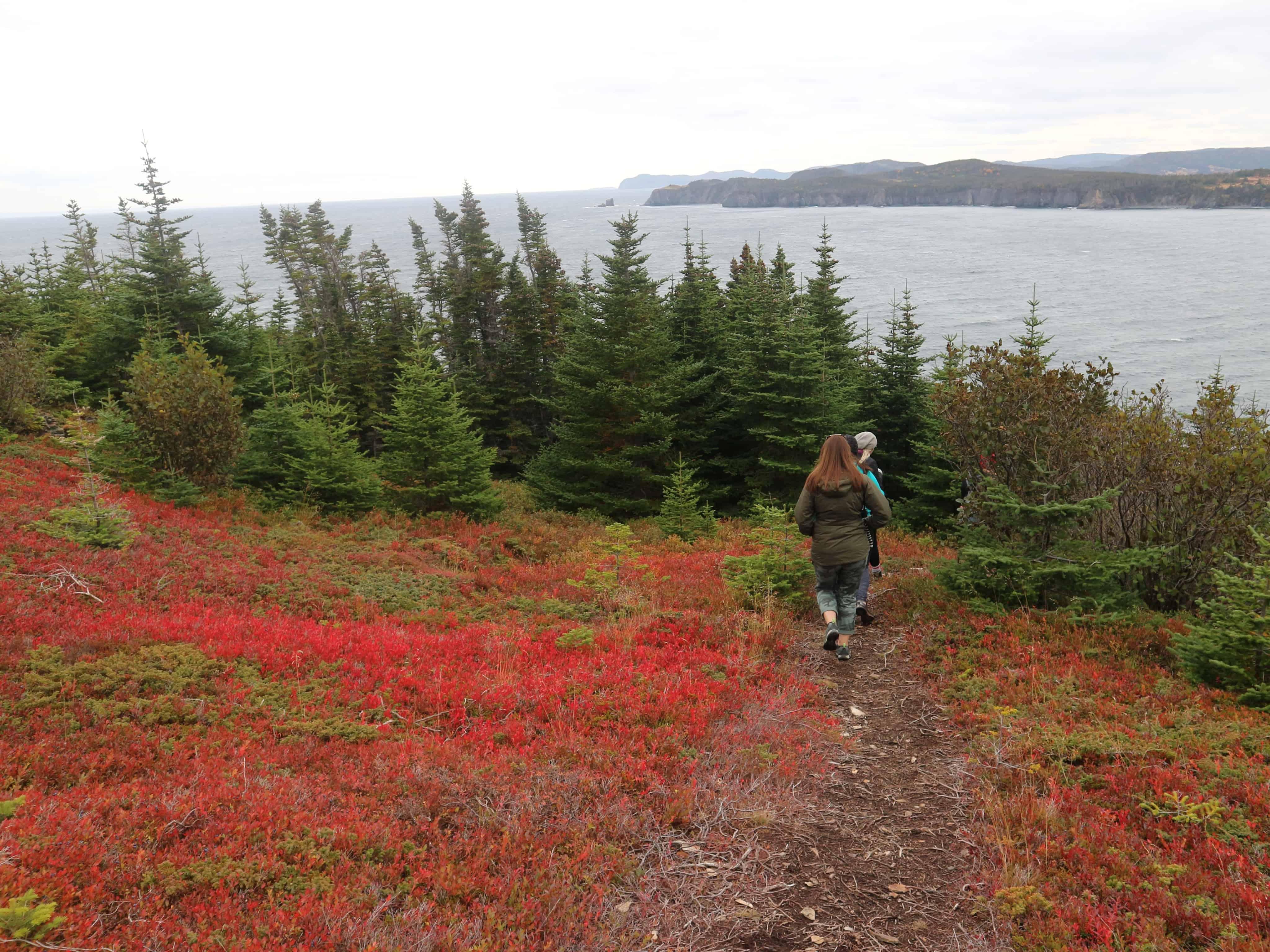 Hiking Fox Island in CHampney's West