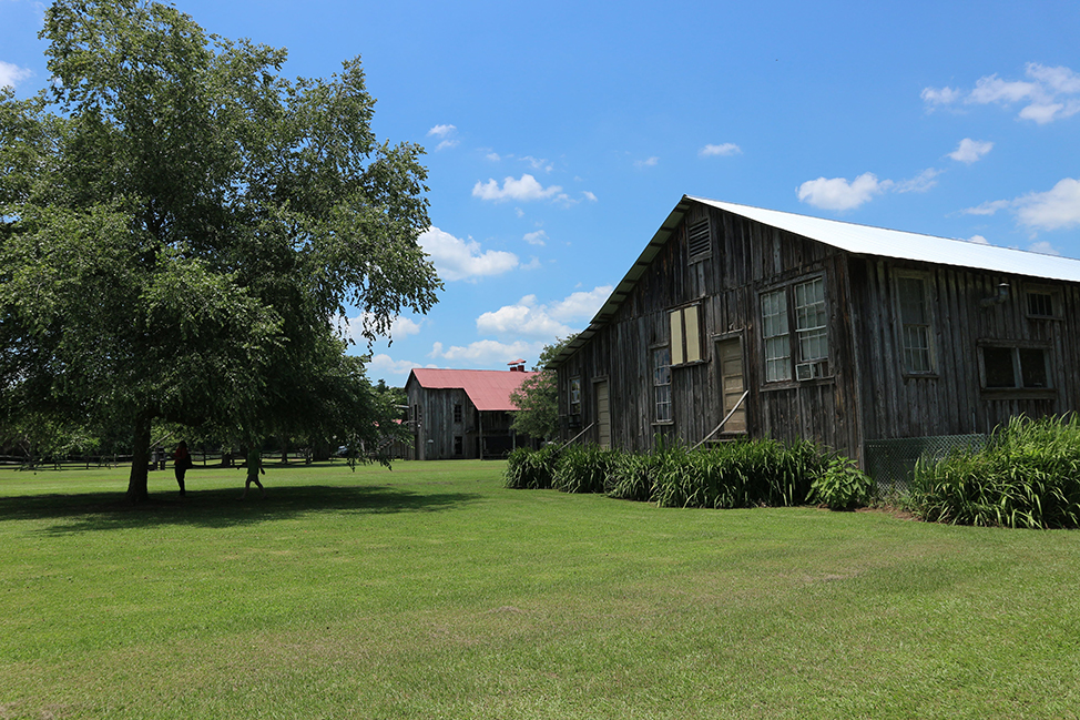 Frogmore Plantation, Louisiana