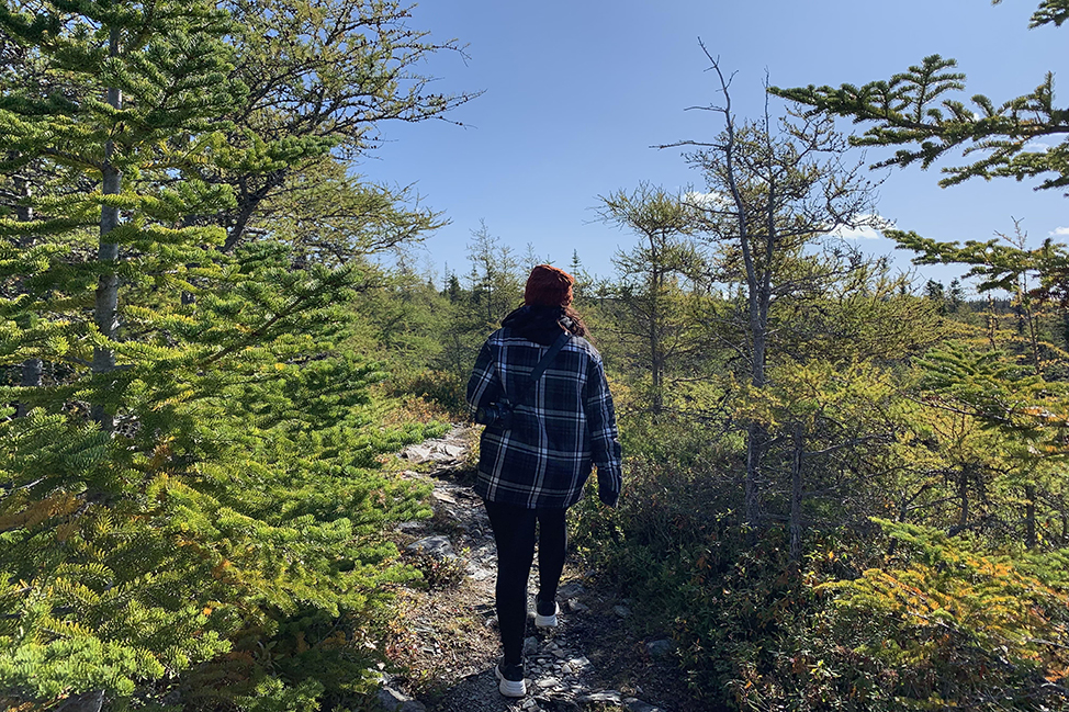 Murphy's Cove to Lodge's Pond Trail